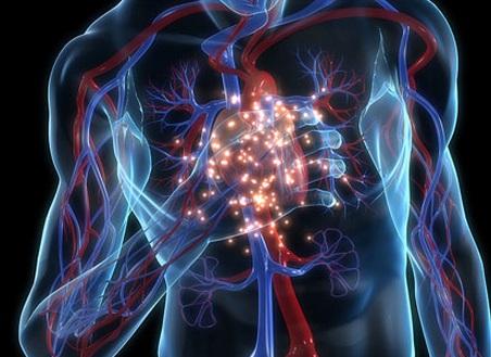 Diabete, ipertensione e sovrappeso: così il cuore diventa più vecchio