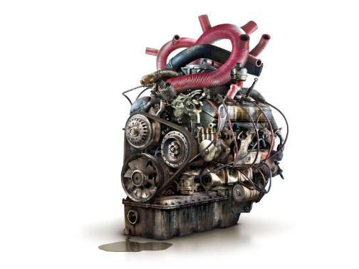 """Prevenzione cardiovascolare: il cuore, la nostra """"macchina perfetta"""""""