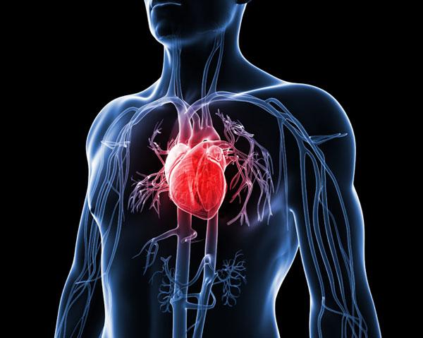 Problemi cardiovascolari: la mortalità è ridotta del 16% grazie alle cure cardiologiche